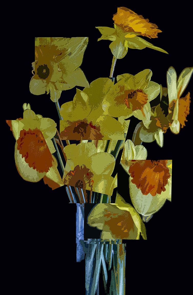 Daffodil Cubes