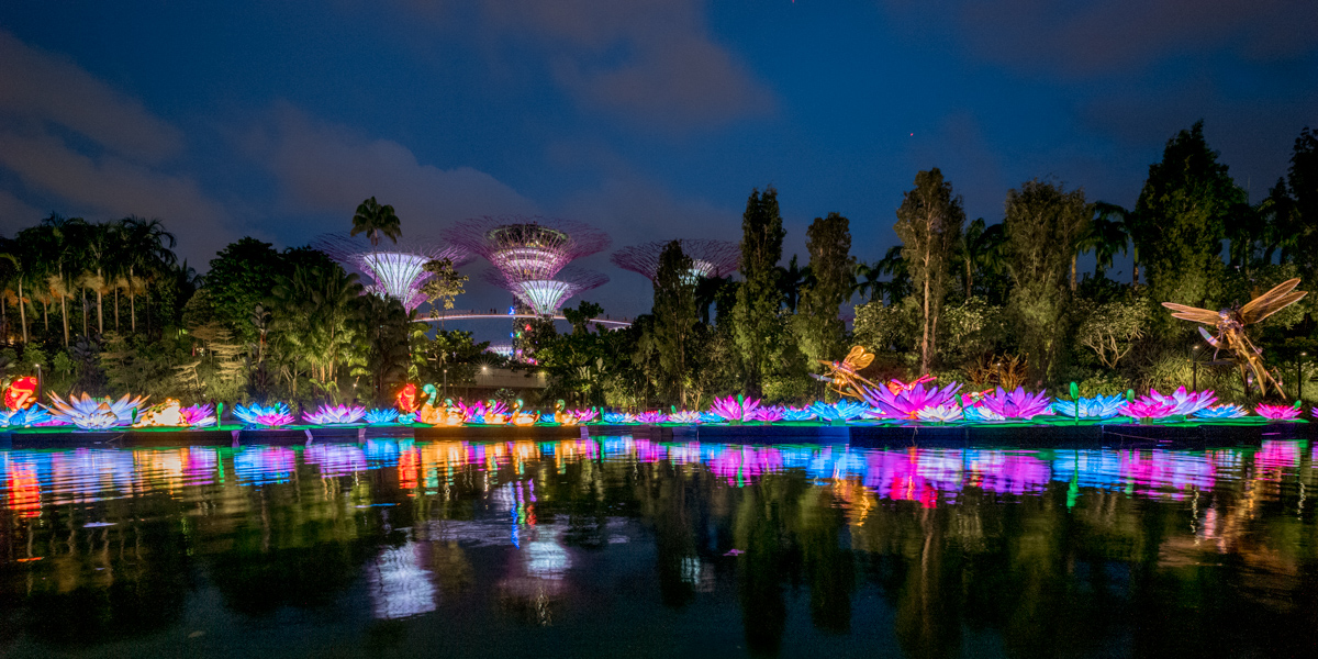 Lantern Festival by the Dragonfly Pond
