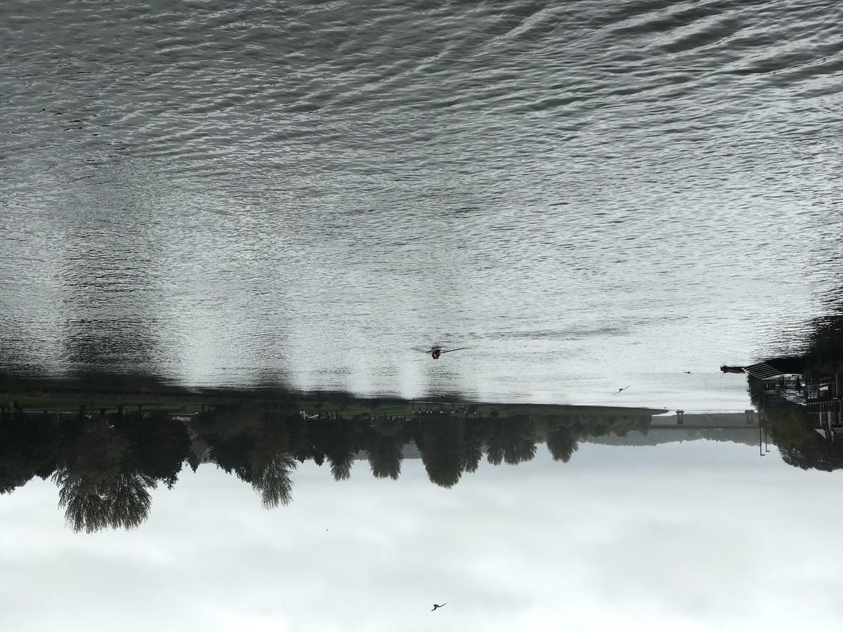 The river Bann