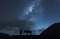 Horsemen standing under milkyway