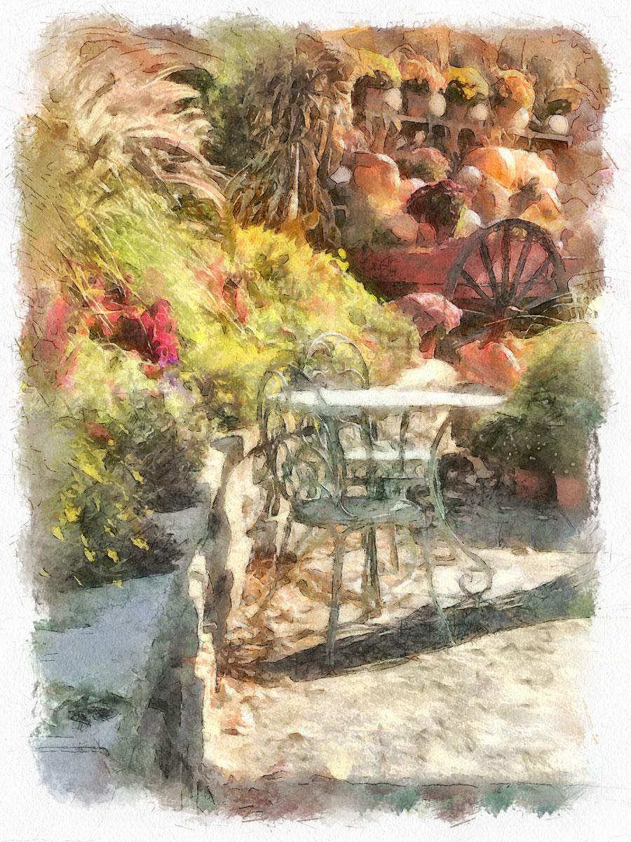 Afternoon in the Autumn garden