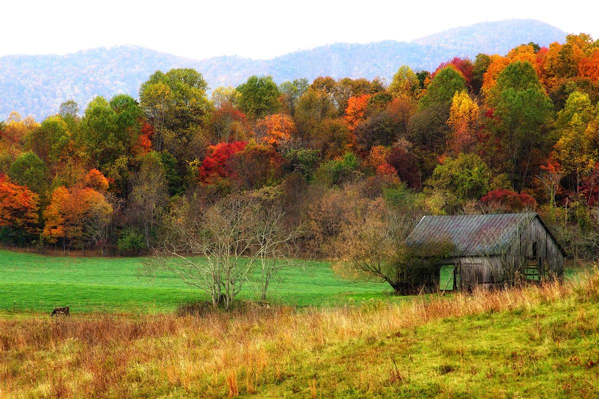 Shenandoah Foothills