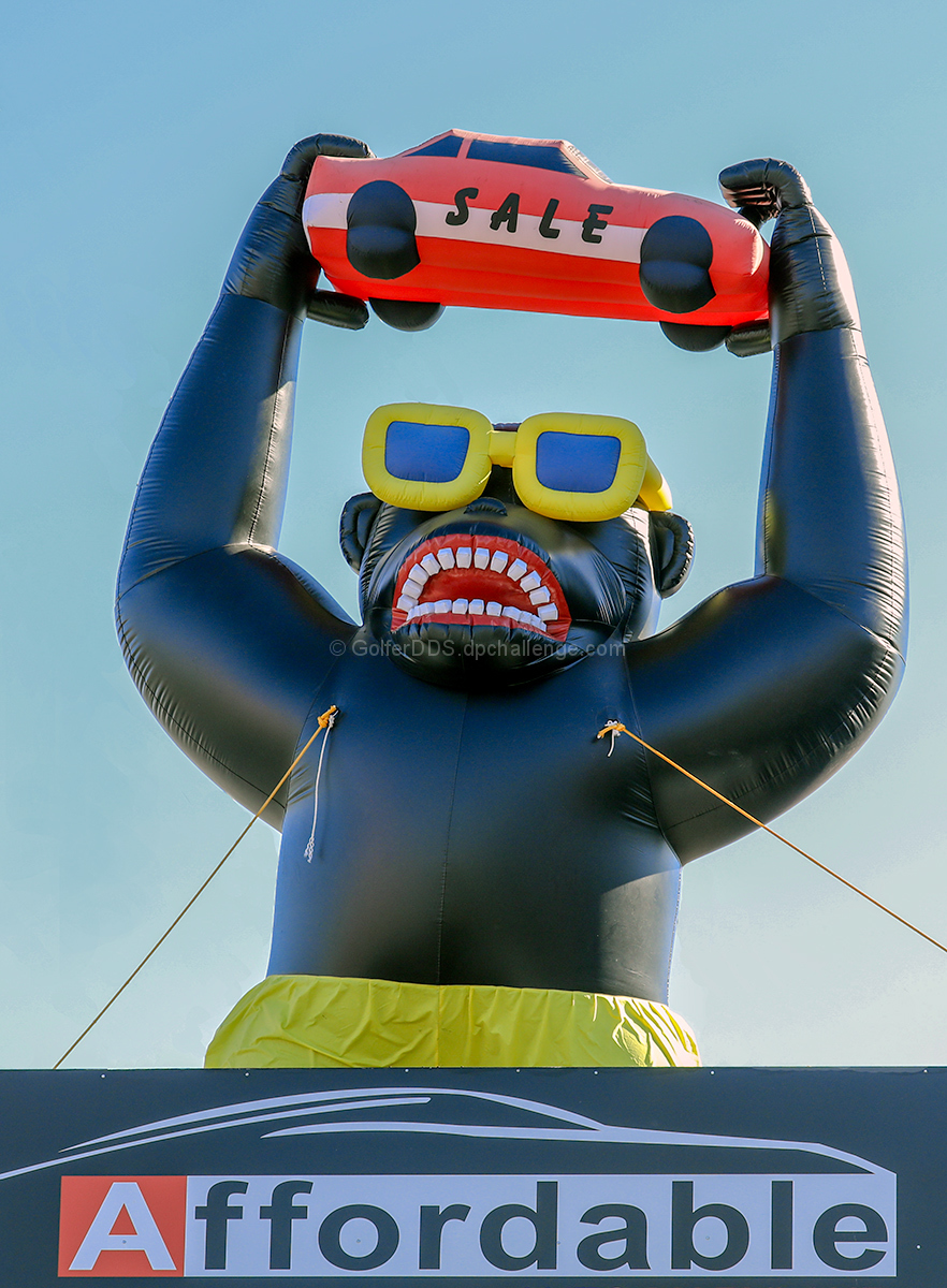 Would You Buy A Car From This Gorilla?
