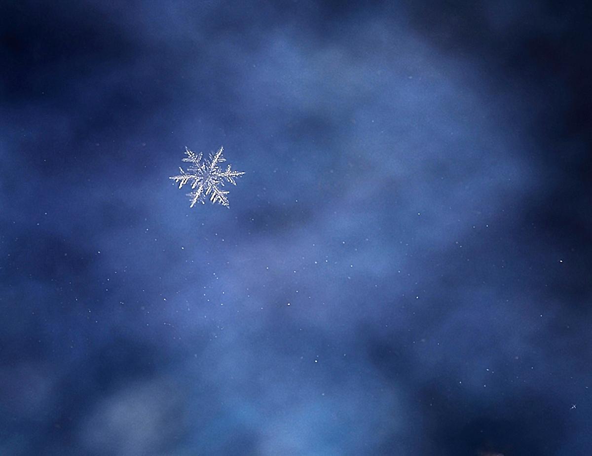 The Last Snowflake of 2017