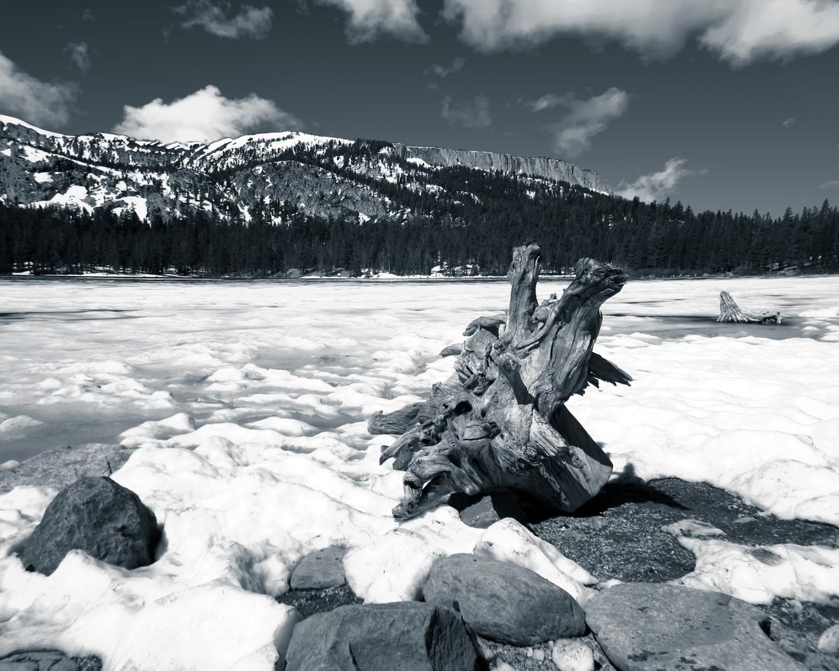 Lake Mary Frozen-