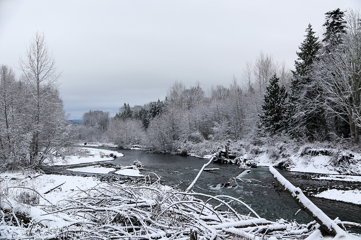 Dungeness River Christmas Day
