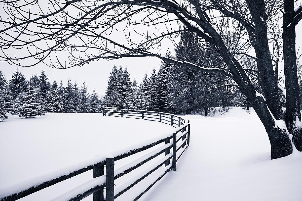 Winter Quiet