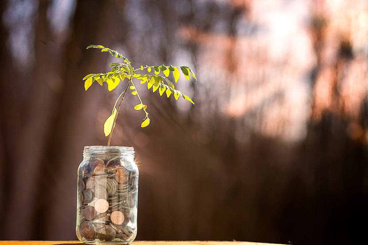 Saving for the future - Financially and Environmentally