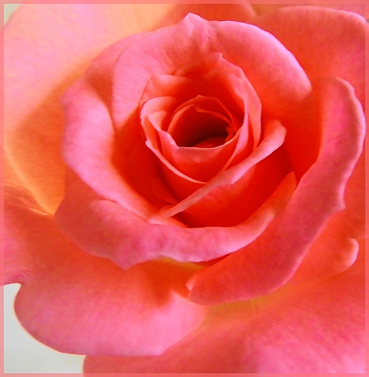 What's in a Name? A Rose by any other would smell as Sweet.