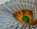 Stairs Deform