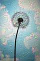 I dreamed a dream of dandelions