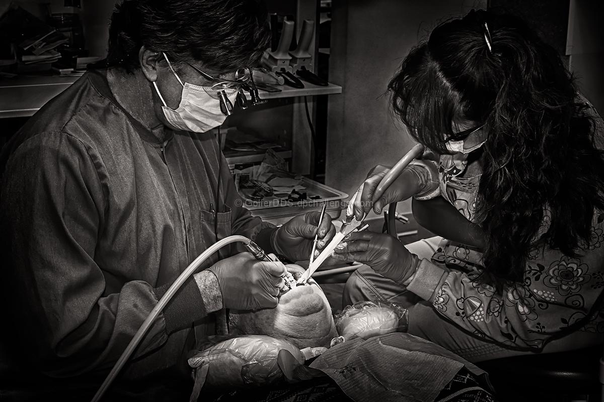 Restoring The Natural Dentition