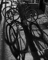 Brooklyn bikes