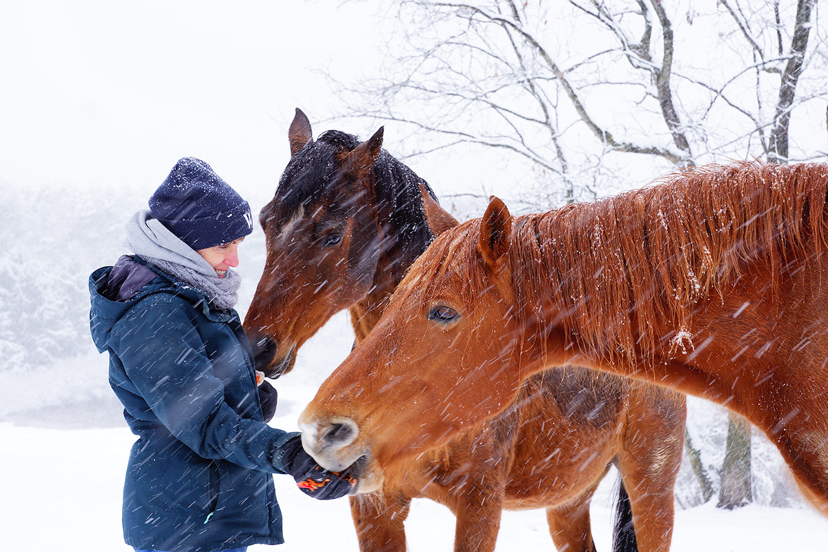 It's never cold when you have carrots.
