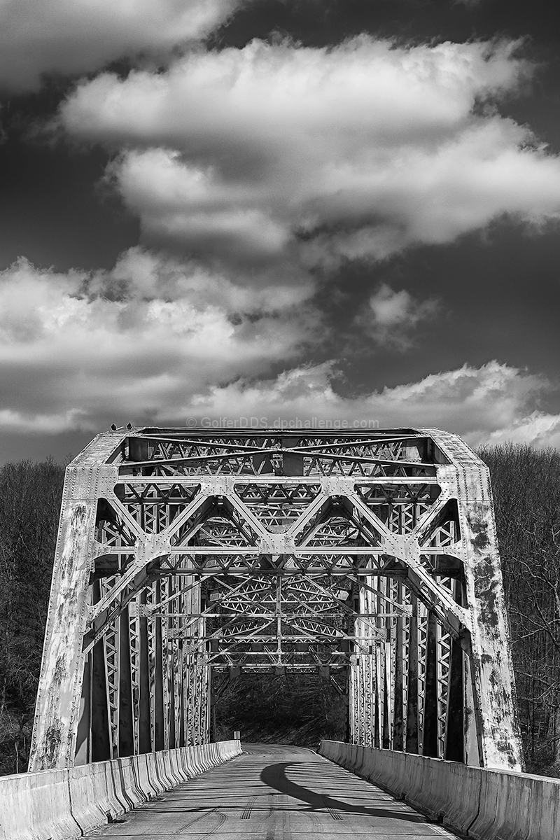 Two Birds On A Bridge