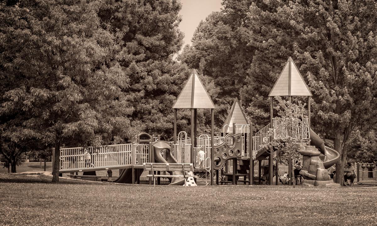 Fun in the Park