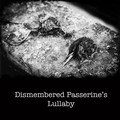 Dismembered Passerine's Lullaby