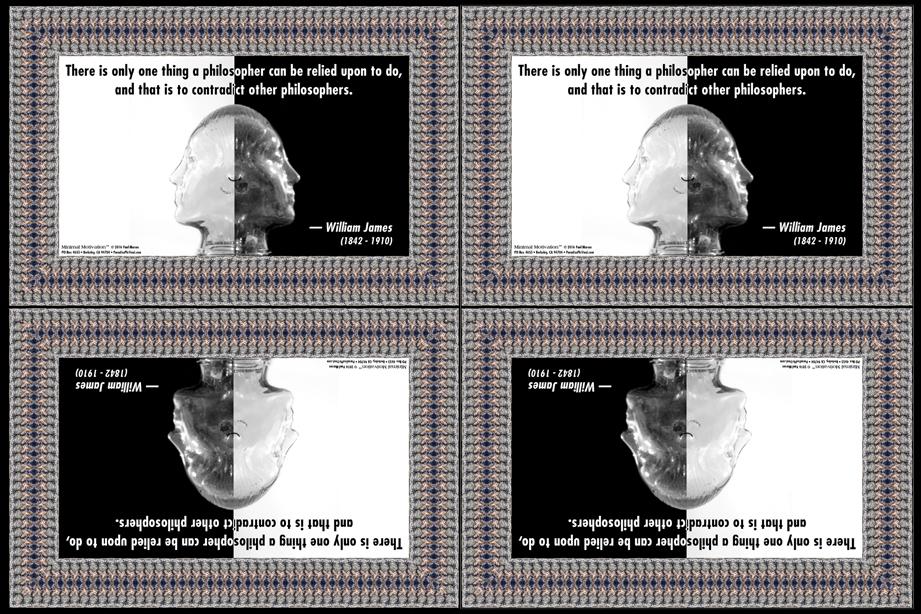 111 William James on Philosophers (wallet print)