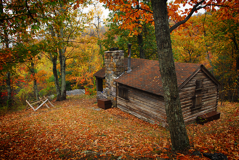 Amazing Doyle River Cabin