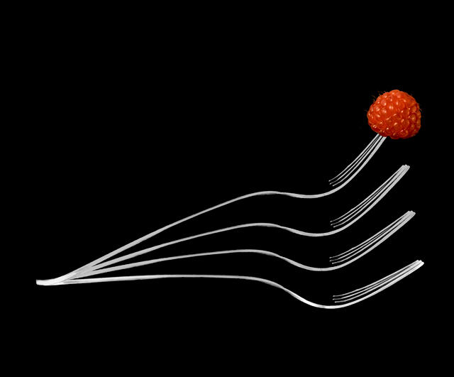 Fork with Raspberry