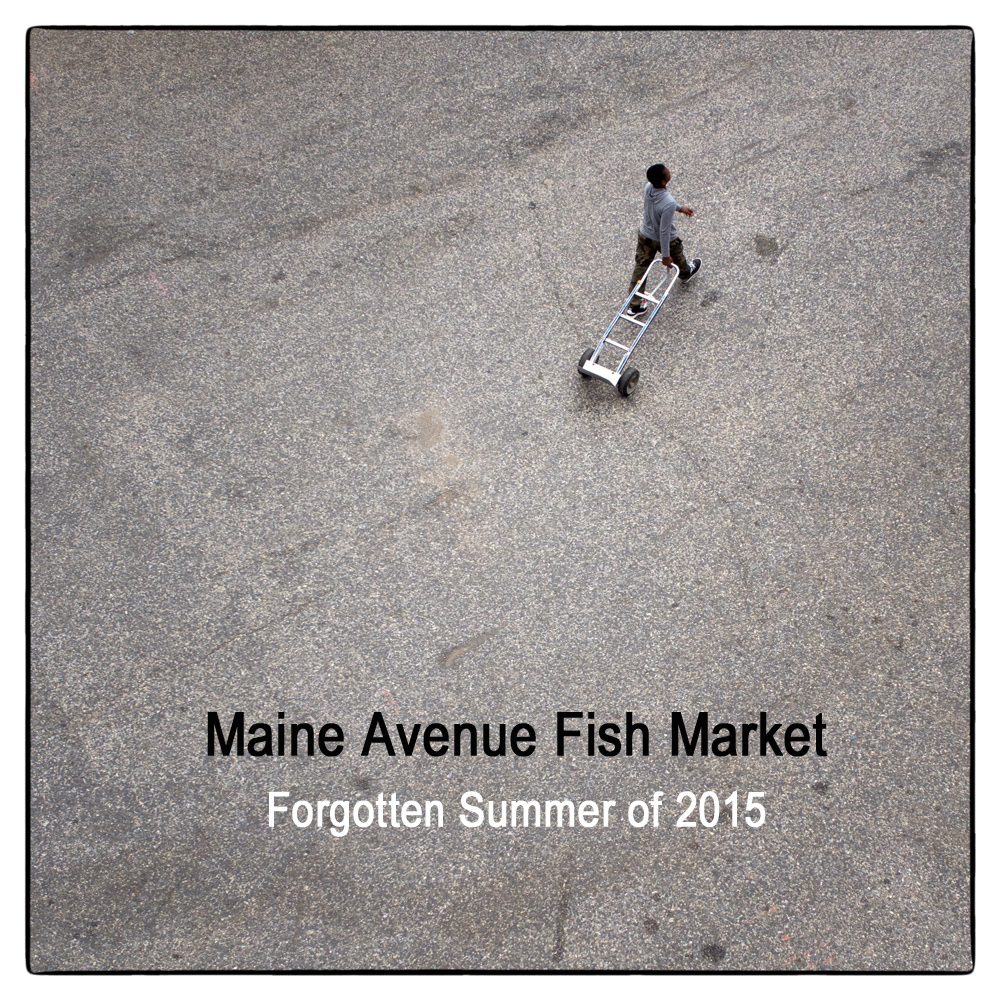 Maine avenue fish market forgotten summer of 2015 by for Maine fish market