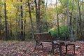 My Park Bench