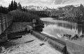 Mammoth Creek Twin Lakes