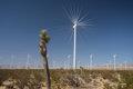 Mojave WInd Turbines-74