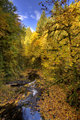 Cedar Creek Fall HDR