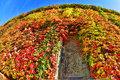 Enter Fall