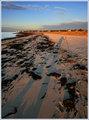 shorewrack-shadow-IMG_2710.jpg