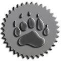 silver bear.jpg