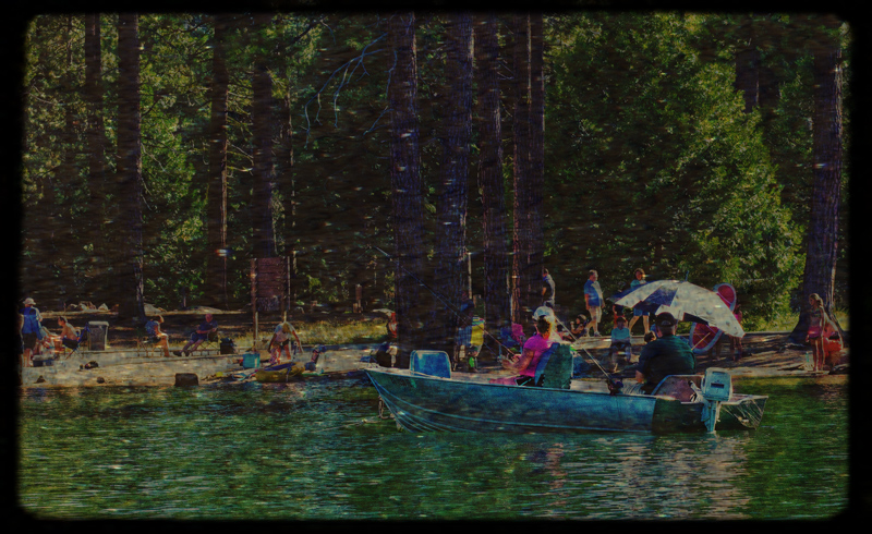 essay on in the lake of the woods