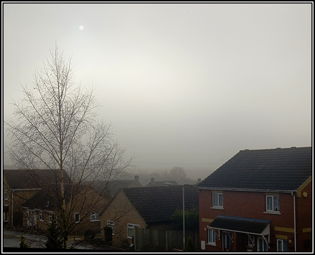Day 1 - Fog