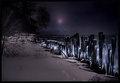 Winter-By-Moonlight.jpg