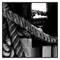Day 15 - Coiled Rope