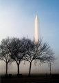 Washington Morning