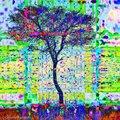 CRW_0732-Edit.jpg