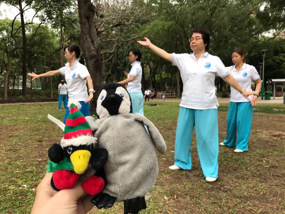 Taiji in the park