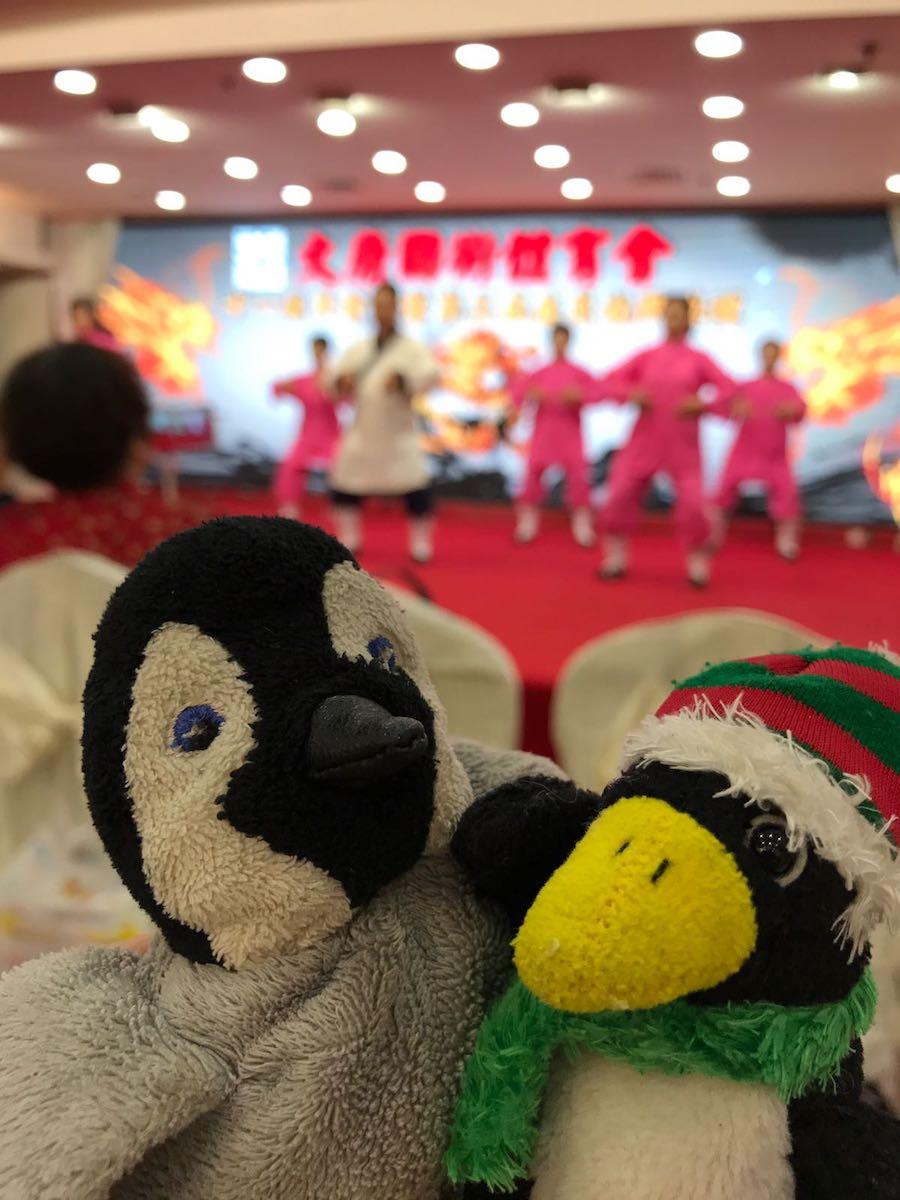Taiji / Martial arts reunion