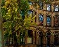 Fall Windows on Spruce