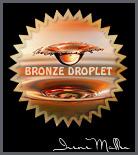 The Water Drop Side Challenge. Bronze Award.