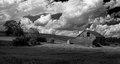 Barn in black & white