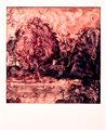Polaroid SX-70_05