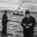 Karakoy Fishermen