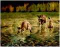 day 25. overlays. 3 kangaroos no.2