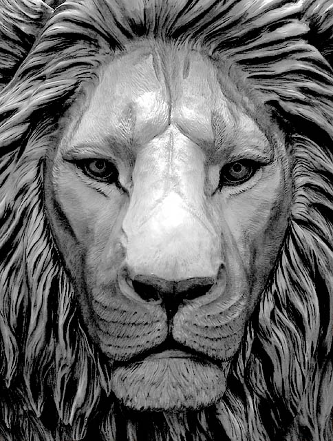 Cool Lion Face Drawings Im Not Its A Drawing day 3 By