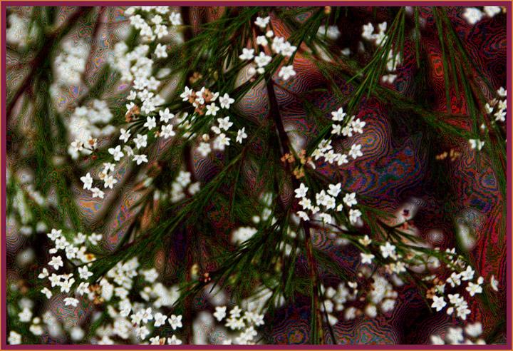 Day 27 - Hippie flowers