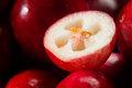 Food 51 - Cranberry