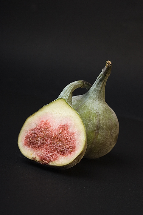 Day 20 - Fig